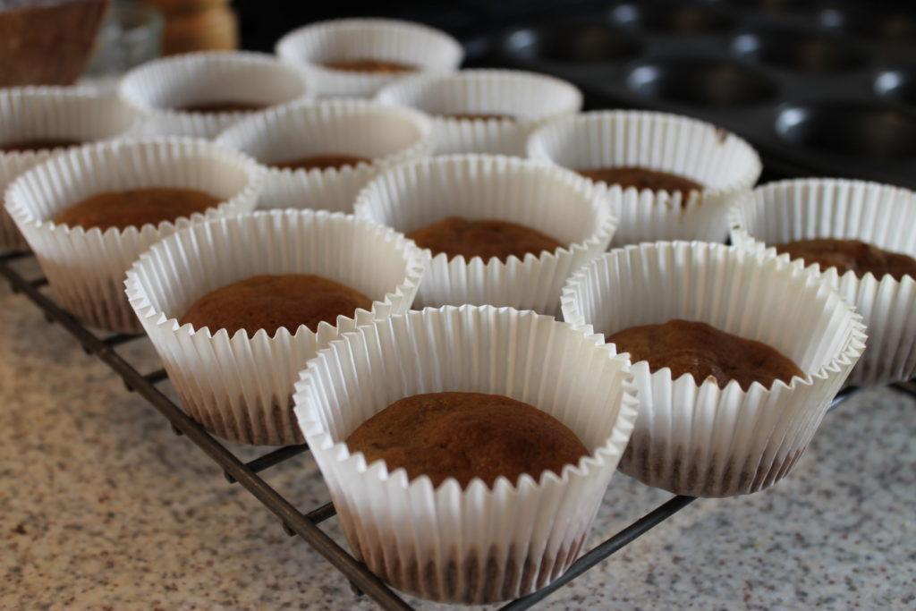 Dense Pumpkin Cupcakes - Halloween Pumpkin Guide by Immortal Wordsmith