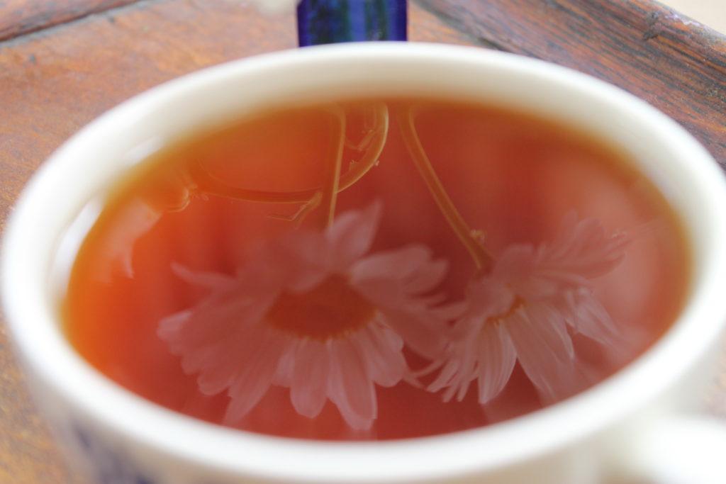 daisies reflected in tea cup