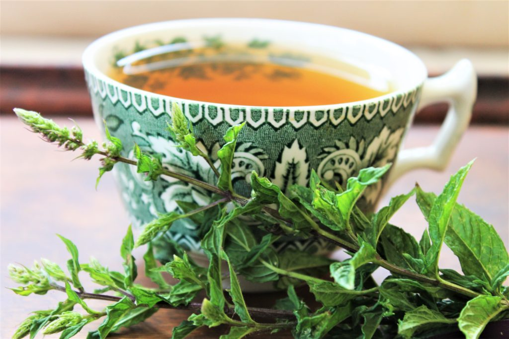 fresh mint and green tea cup